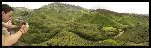 Cameron Highlands Boh Tea Plantation (8)
