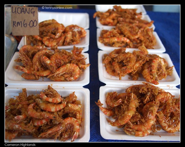 Cameron Highlands Street Foods (10)