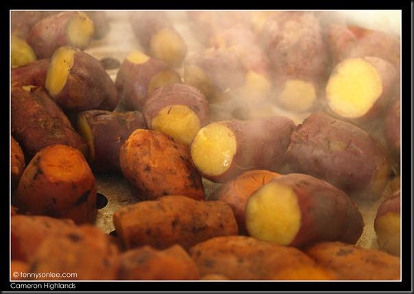 Cameron Highlands Street Foods (2)