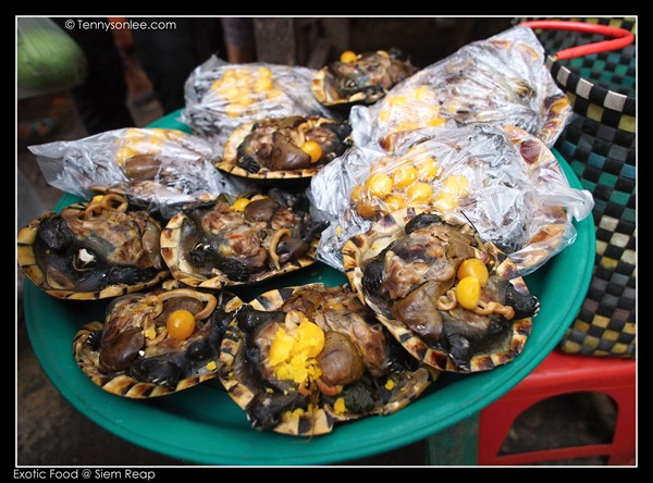 exotic food (5)