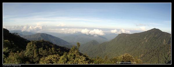 Gunung Brinchang (2)
