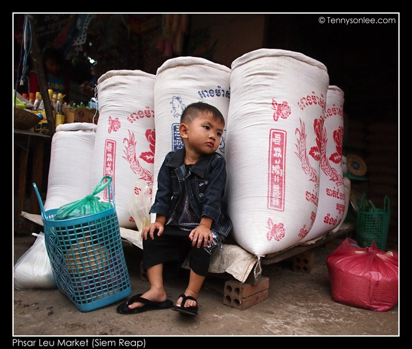 Phsar Leu Market (2)