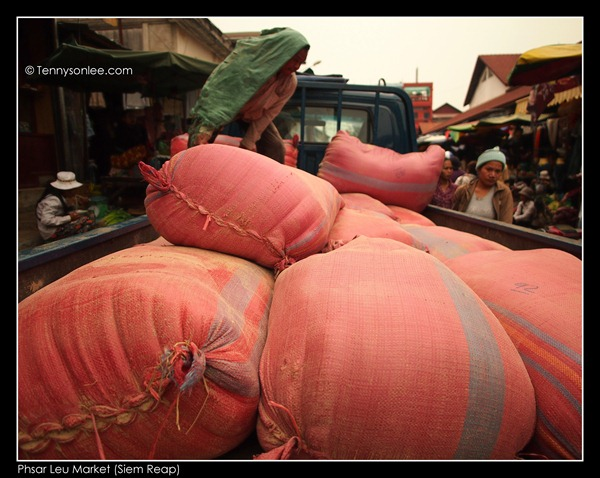 Phsar Leu Market (3)