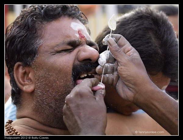 Piercing at Thaipusam (11)