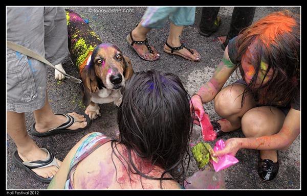 Holi Festival 2012 (19)