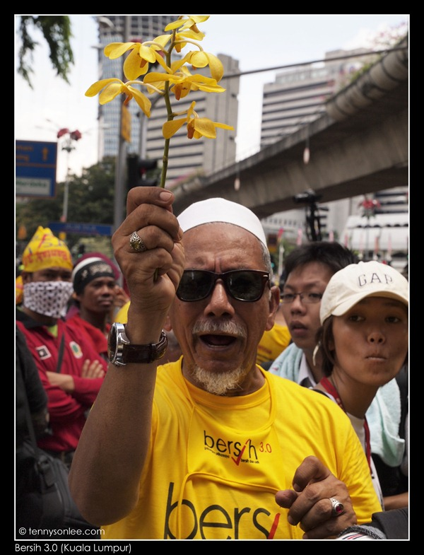 Bersih 3.0 we want change (13)