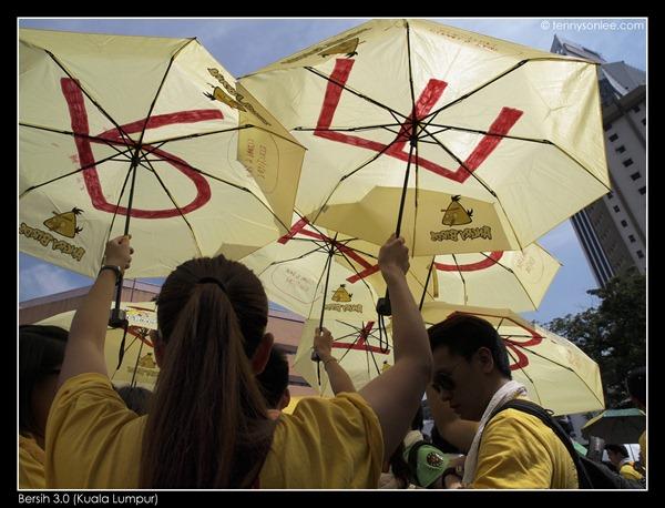 Bersih 3.0 we want change (4)