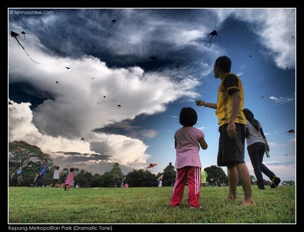 Kepong Metropolitan Park (4)
