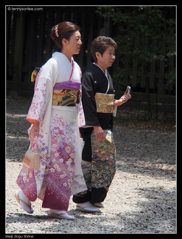 Meiji Jingu Shrine (3)