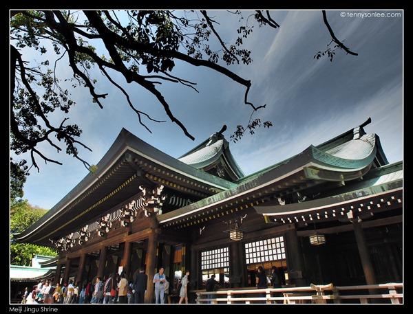 Meiji Jingu Shrine (6)