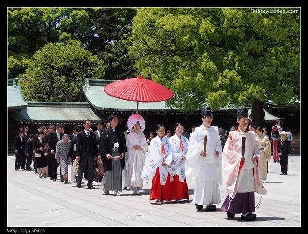 Meiji Jingu Shrine (7)