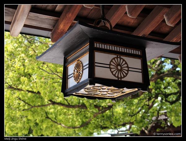 Meiji Jingu Shrine (8)