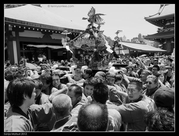 三社祭神轿 Sanja Matsuri Mikoshi (3)