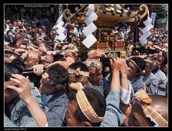 三社祭神轿 Sanja Matsuri Mikoshi (5)