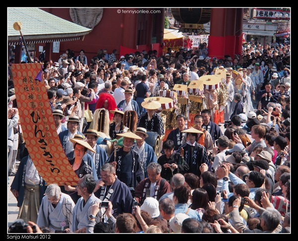 三社祭 Sanja Matsuri procession (3)