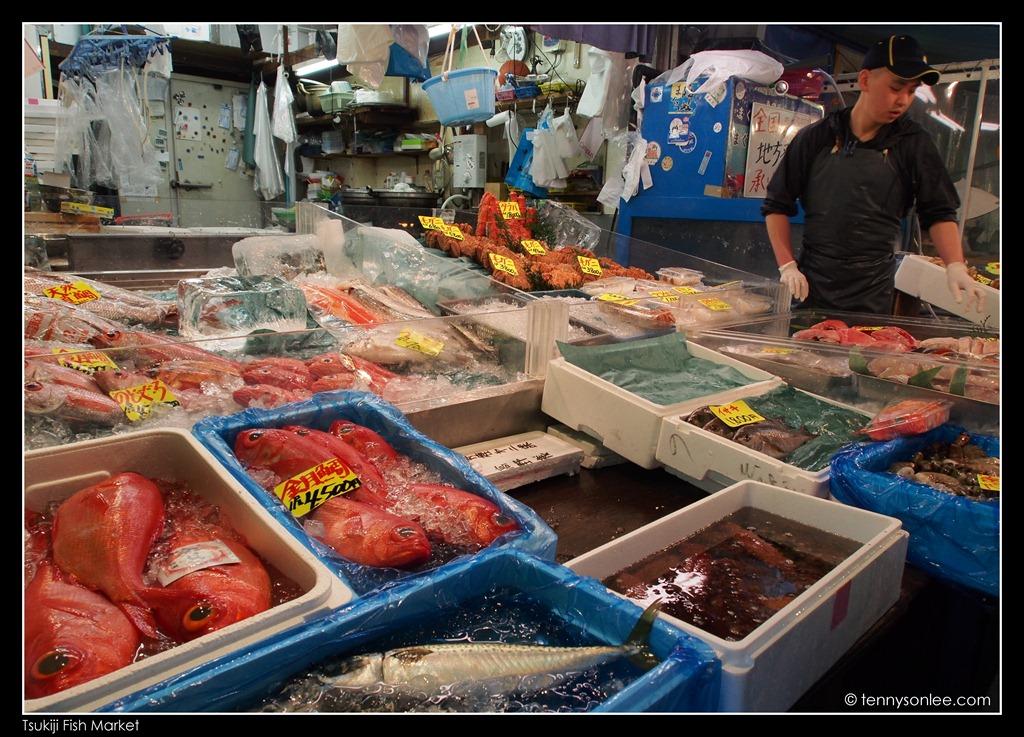 The legendary tsukiji market present moment for Tsukiji fish market