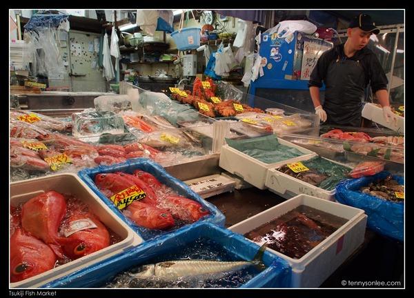 Tsukiji Fish Market (11)