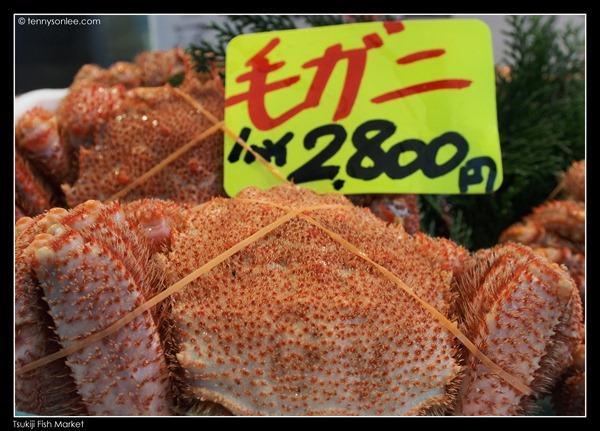 Tsukiji Fish Market (12)