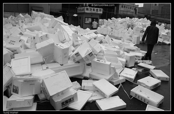 Tsukiji Market Tuna Auction (10)