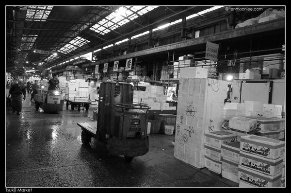 Tsukiji Market Tuna Auction (8)