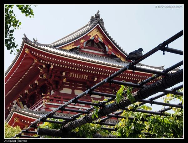 Asakusa (4)