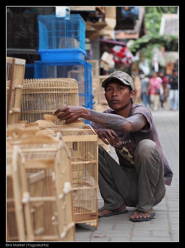 Yogyakarta Bird Market (1)