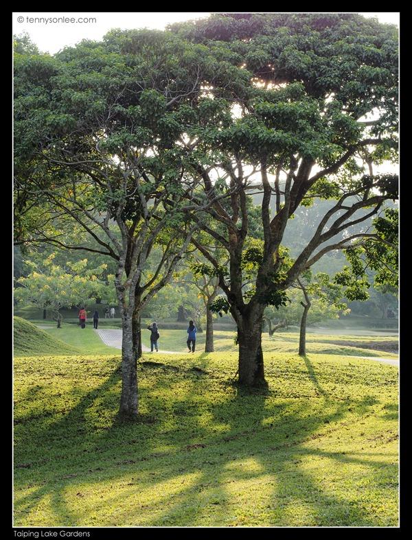 Taiping Lake Garden (5)