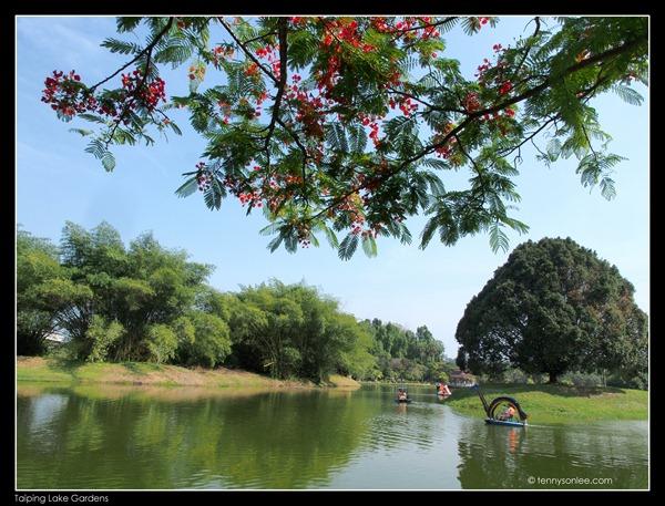 Taiping Lake Garden (8)