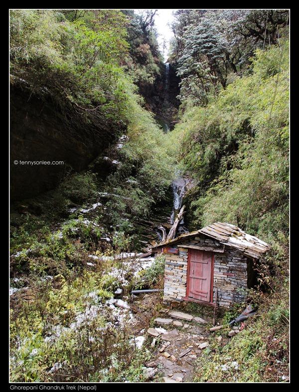 Deurali pass to Tadapani (13)