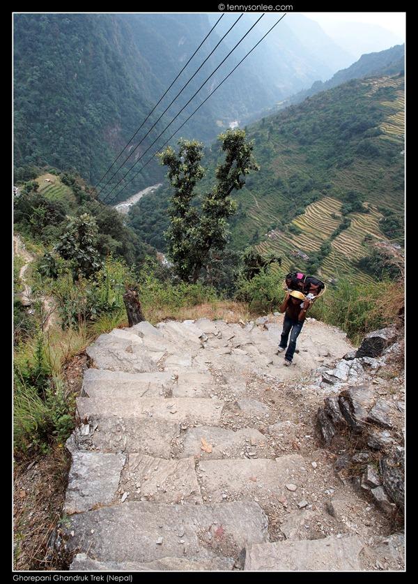 Ghorepani Ghandruk Trek (1)