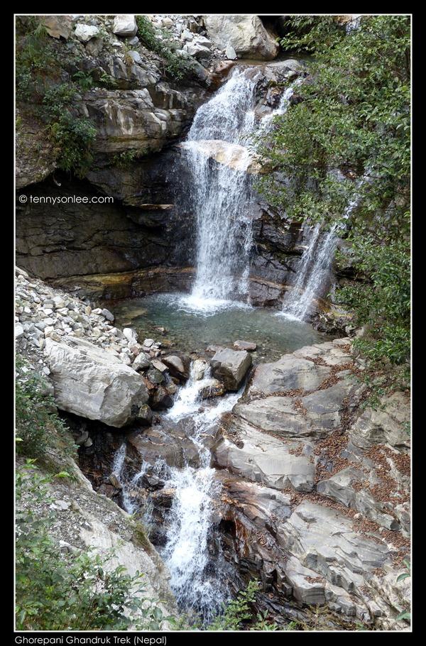 Ghorepani Ghandruk Trek (7)