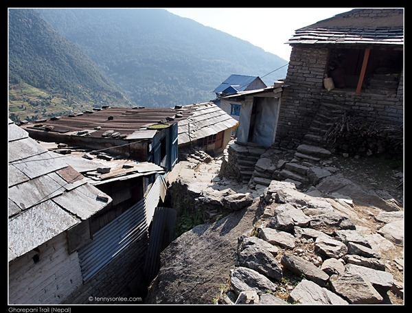 Ghorepani Trail (12)