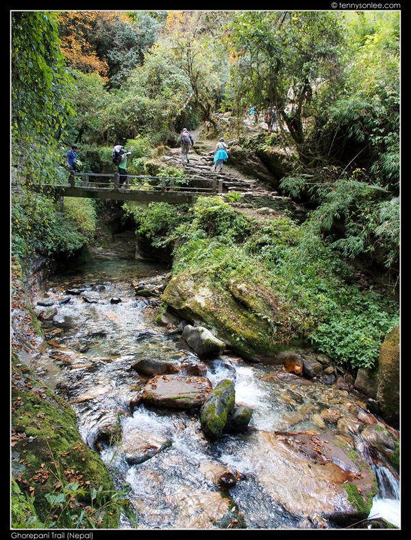 Ghorepani Trail (17)
