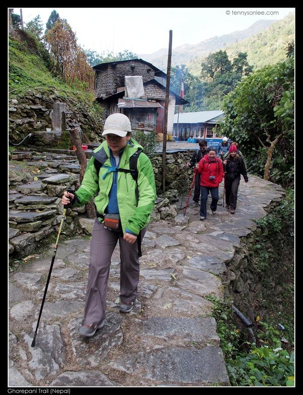 Ghorepani Trail (2)