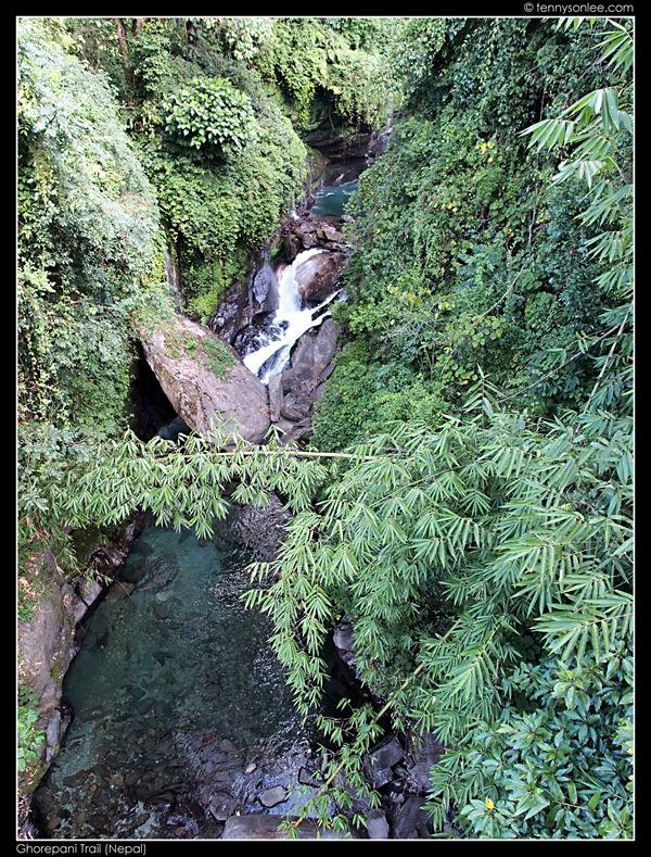 Ghorepani Trail (5)