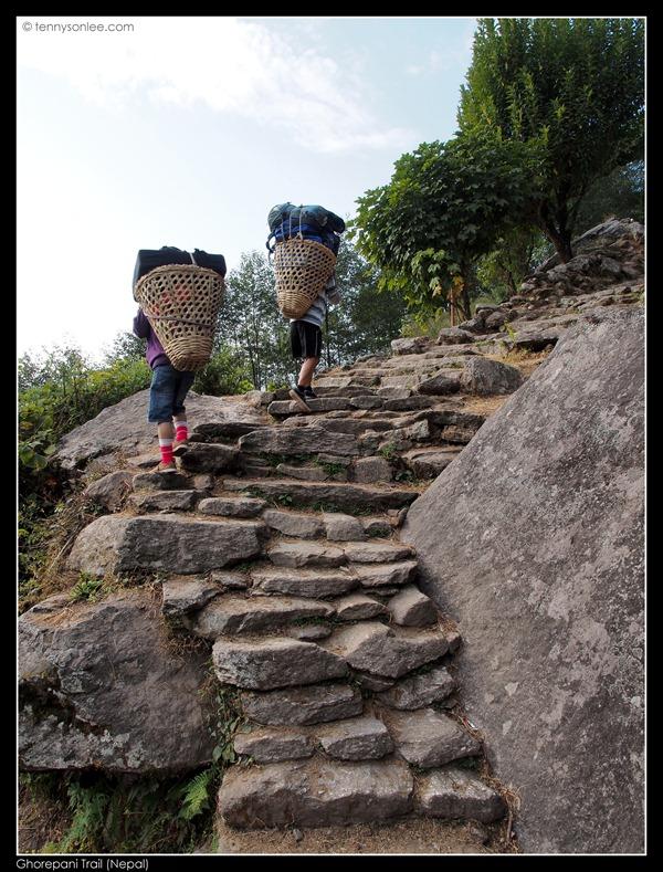 Ghorepani Trail (8)