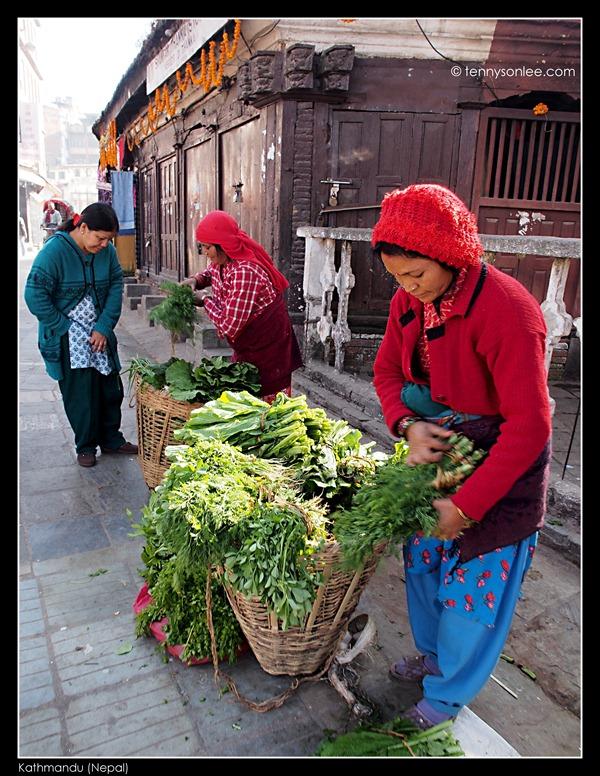 Kathmandu Wet Market (11)