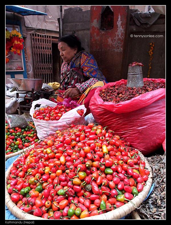 Kathmandu Wet Market (6)