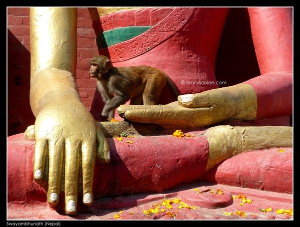 Swayambhunath (2)