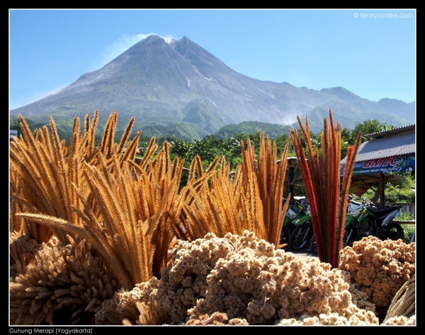 Mount Merapi (1)