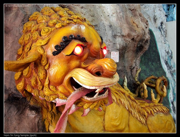 Nam Tin Tong (2)