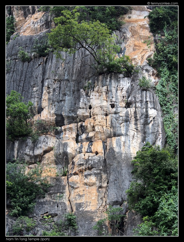 Nam Tin Tong (3)