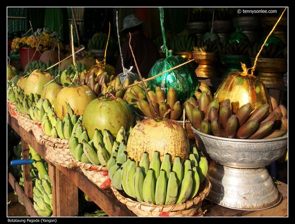 Botataung Pagoda (13)