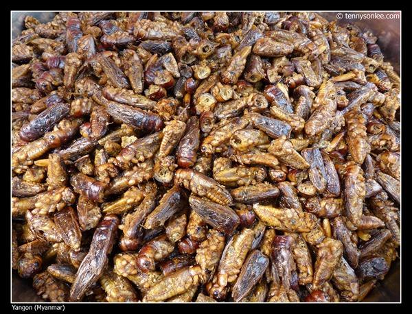 Burmese Foods (19)