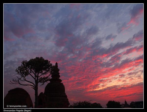 Shwesandaw Pagoda (4)