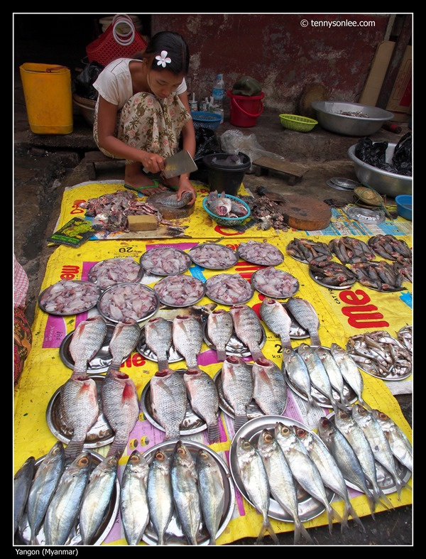 Yangon wet market (9)