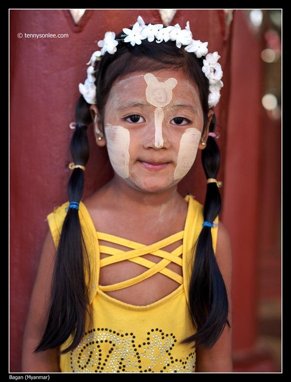 Burmese (10)
