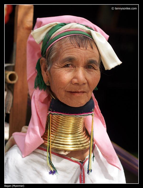 Burmese (5)