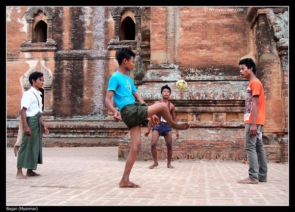 Burmese (7)
