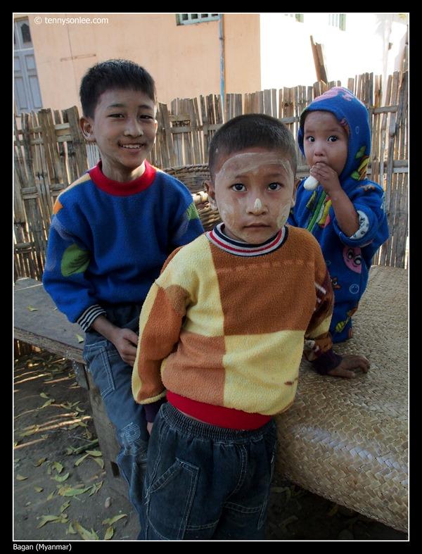 Burmese (9)